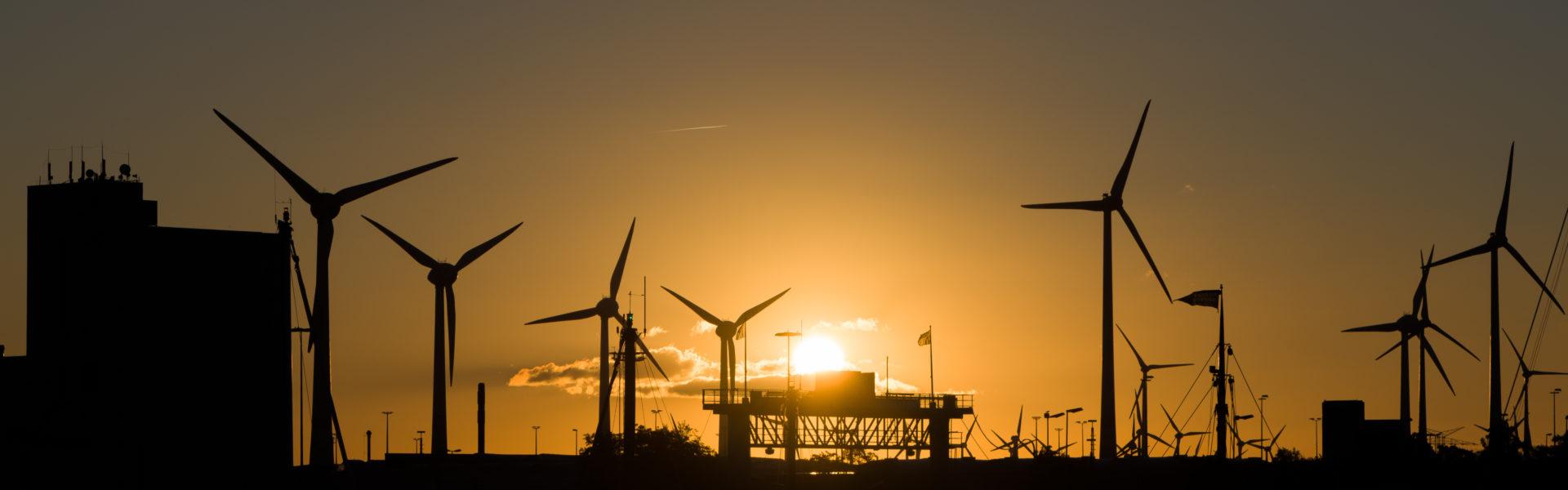 Das Bild zeigt eine grüne Landschaft mit Windkraftanlagen. Im Vordergrund sind Photovoltaikpanels auf Ständern und ein Haus mit Photovoltaikpanels auf dem Dach zu sehen.